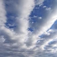 4月23日(日)朝の浅川-富士山・シラサギ・キジと青空