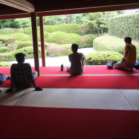 彦根サイクリングクラブ6月行事で大池寺のスイレンを観賞しました・・・