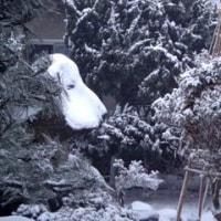 この冬一番の寒気とスヌーピー