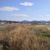 大和川は日本の年表が流れている?。