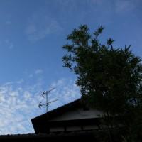一日だけの晴れ間かな~!? 2016.10.27