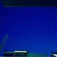 25/Oct 屋根の上のオリオンと相模川の朝焼けとトンビとニャンズ