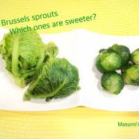 【Cooking/野菜の知識】今が旬の芽キャベツ