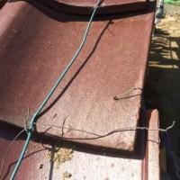 物置屋根の修理