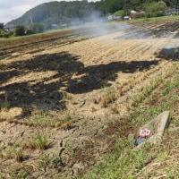 稲刈り後のわらを燃やしました