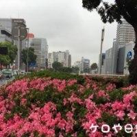 お使い道中(5月26日)