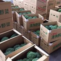 2016年 震災復興!第10回、田崎市場感謝祭・・・熊本:八百屋のブログ、更新しました。