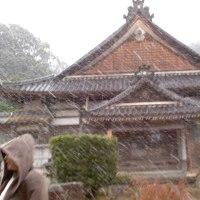 寿和会(老人会)から初詣へ1.13金