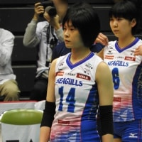2016/17 V・チャレンジマッチ 神奈川大会