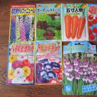 野菜と花を育てます!