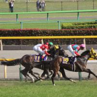 レッドコルディス 東京11R オークス 芝2400m