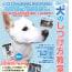 10月2日(日)犬のしつけ方教室開催