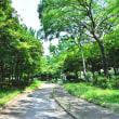 いつもの散歩道・・・(07/28)