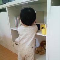 生後12ヶ月、1歳になりました