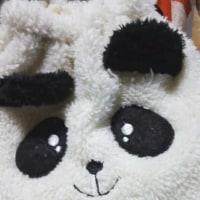 芥川賞と直木賞~☆