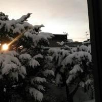 積雪33センチ