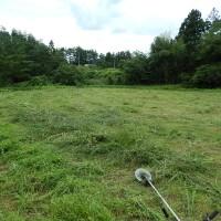 古民家の休耕田は震災と余震で草は機械刈です!
