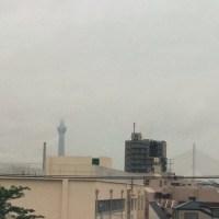 梅雨本番もうすぐですね(^o^)(^o^)