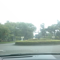 #246 -'16.    お墓参り(9月26日)
