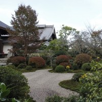 浜松フラワーパークと龍潭寺