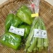 日替わりマルシェ「奈良産直センター」さんの野菜♪