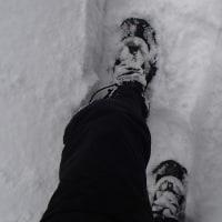 山小屋の雪掘り・・・