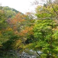 南昌山(10/25、五合目まで)