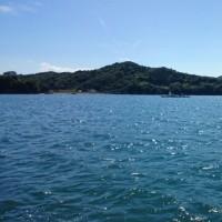 2017 BIG1チヌ筏かかり釣り大会