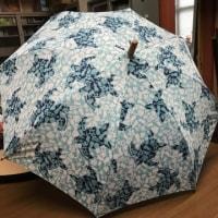 フララニの傘