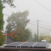 朝霧の季節