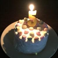 銀河 5歳の誕生日
