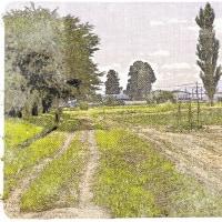 コローの風景画へのオマージュ