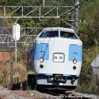 【鉄道写真】189系あずさ色「鎌倉紅葉号」