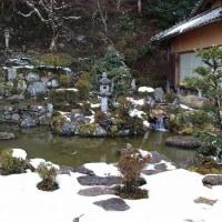 西教寺 冬景色
