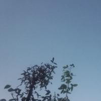 仙台の空10月21日