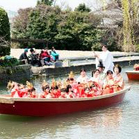 2017 柳川おひな様水上パレード 6(川岸に春を彩る花が咲き始めパレードに彩を添える)  《福岡県柳川市》