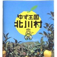 柚子のラッシー、新登場です !