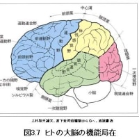 三鷹通信(192)三鷹市民大学・哲学コース(5)