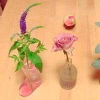 花と鳥・・・