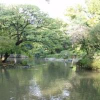 日比谷線広尾駅(南麻布五丁目 公園内の池)