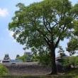 熊本城その1