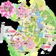 「花フェスタ記念公園」世界最大級のバラ園!きれいなバラが7000品種30,000株!