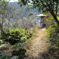 里山散歩 4-3