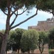 イタリア旅日記 NO6 ローマの街歩き