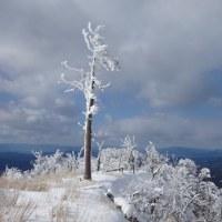 寒波 青空と雪