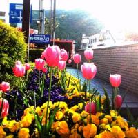 春の美術展
