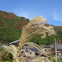 京都府南丹市美山町にツーリングに行ってきました(11月13日)