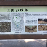 世田谷城と豪徳寺