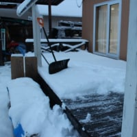 久し振りの雪かき
