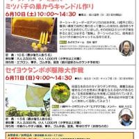 【5月21日更新】八幡平ビジターセンター 6月のイベント情報!